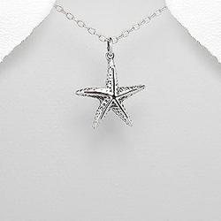 Pendentif Étoile de Mer en Argent